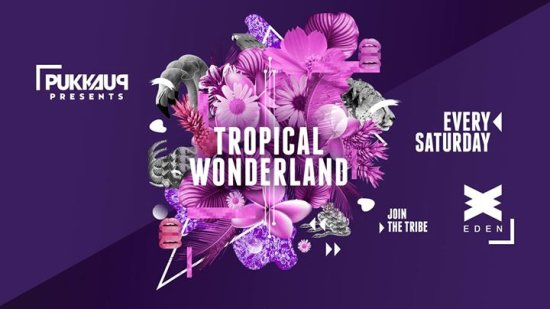 Tropical Wonderland Ibiza