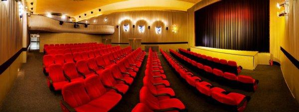 Kino Regina Regensburg Programm